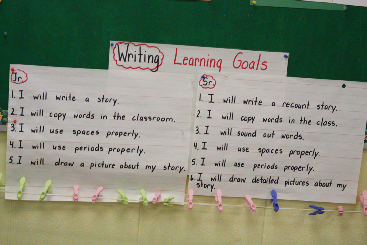 Educational goals essay examples