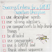 Success Criteria Description